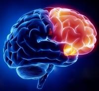 "Neurology Conference -  ""A NEW NEURO ERA"""